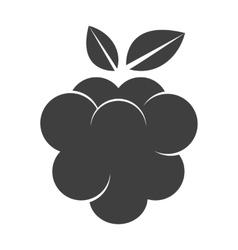 Raspberry icon silhouette vector image