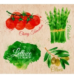 Vegetables watercolor lettuce cherry tomatoes vector image