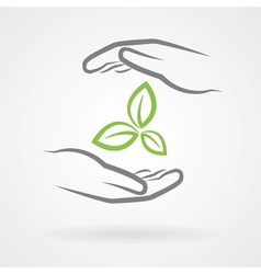 hands and green leaves vector image vector image