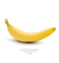 a banana on white background vector image