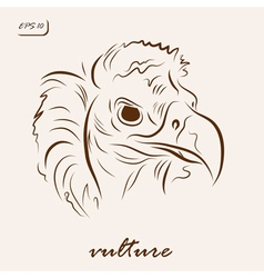 Black vulture vector