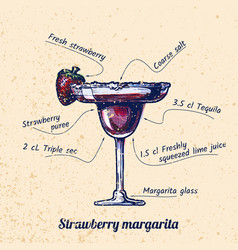cocktail strawberry margarita vector image