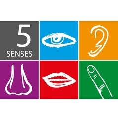 Five senses icon set vector image