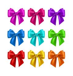 Realistic multicolor bows collection vector