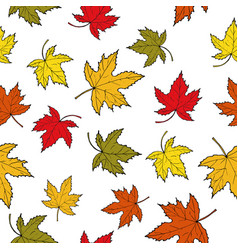 Seamless pattern with colorful autumn maple leaves vector