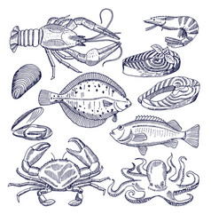 sea food for restaurant vector image