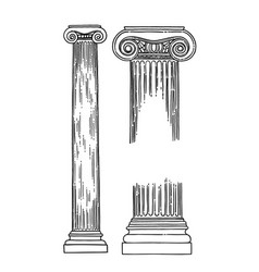 antique ionic order columns drawn in engraving vector image