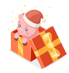 Cute cartoon baby pig cub gift box isometric vector