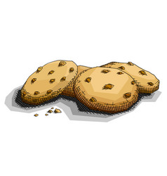 Drawing chocolate cookies vector