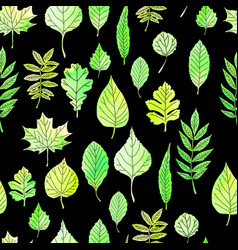 green leaves on a black background vector image