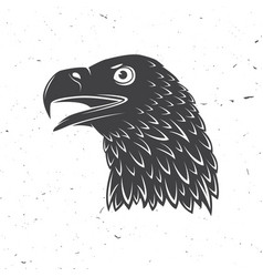 head of golden eagle bird vector image