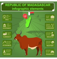 Madagascar infographics statistical data sights vector image