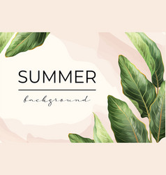 palm leaves banner background vector image