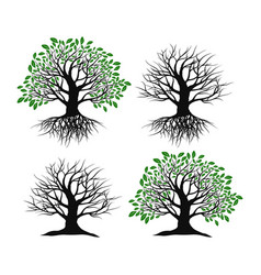 setset of trees on a white background vector image vector image
