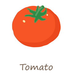 tomato icon isometric style vector image