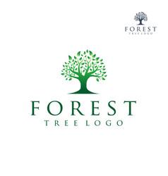 tree logo silhouette a tree logo design vector image