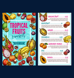 tropical fruits template vector image