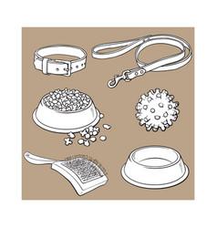 pet cat dog accessories - bowl collar leash vector image vector image