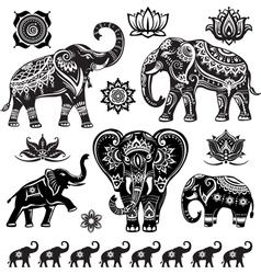 Set of decorated elephants vector