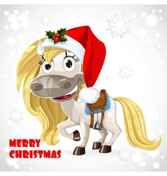 Merry Christmas card with cute white baby horse vector image vector image