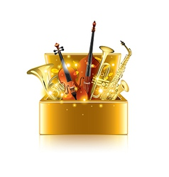 musical instruments box isolated vector image