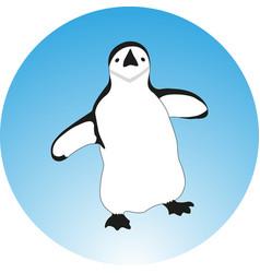 Cartoon penguin vector