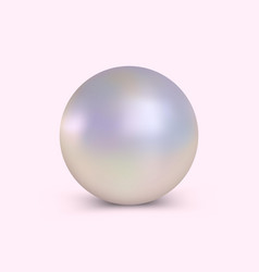 Elegant realistic pearl vector