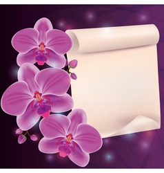 Greeting card with exotic flower orchid and paper vector