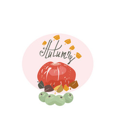 harvest or thanksgiving background with pumpkins vector image