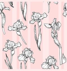 pink iris pattern vector image