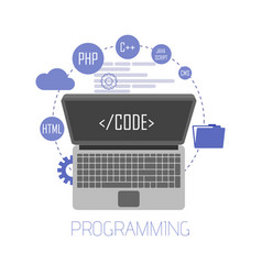 Programming and coding website development web vector