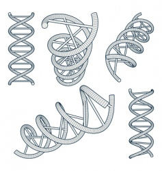 Dna symbols set vector