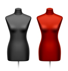 female tailors dummy mannequin vector image vector image