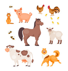 cartoon pets vector image