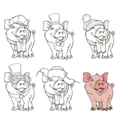 Cute pig in different clothing options vector