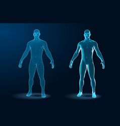 Temlate set of human body 3d polygonal wireframe vector