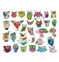 Set of funny owl collection for your design vector image vector image