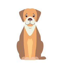 cute beagle dog cartoon flat icon vector image vector image