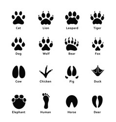 Animals footprints paw prints set of different vector