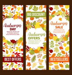 Autumn sale discount promo fall seasonal banners vector
