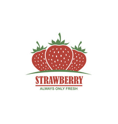 emblem of strawberries vector image