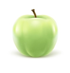 Greeen apple isolated on vector image