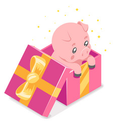 isometric 3d cute cartoon baby pig cub gift box vector image