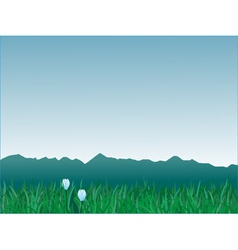 panorama of mountains vector image