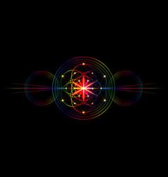 seed life symbol sacred geometry flower life vector image