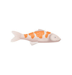 small koi fish with bright orange spots sea vector image