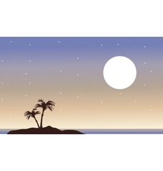 At night islands landscape of silhouette vector image