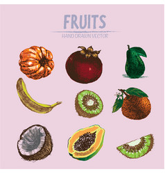 Digital detailed fruit hand drawn vector