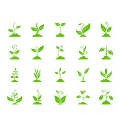 Grass color silhouette icons set vector
