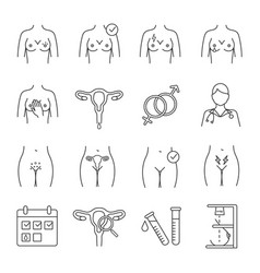 Gynecology linear icons set vector